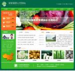 编号:5036 百蔬缘农产品有限公司南宁市隆安县建站需要什么|婚庆公司网页设计|沙井网站制作|网页课件制作教程|