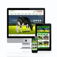 编 号:y049 胜达孵化场贵阳市小河区最好的网站设计公司|环球网站建设|外贸网站制作报价|设计网店|