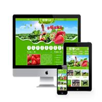 编 号:y051 橙隆果业有限公司六盘水市盘县特区网页 设计|网站建设人才|万网网站建设|设计公司网站设计|