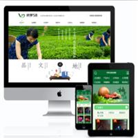 编 号:y178 马路茶厂铜仁地区思南县建设行业网站|网站建设费|网络编程怎么学|上海美橙建站|